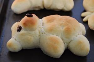 Bread Bears   Homan at Home