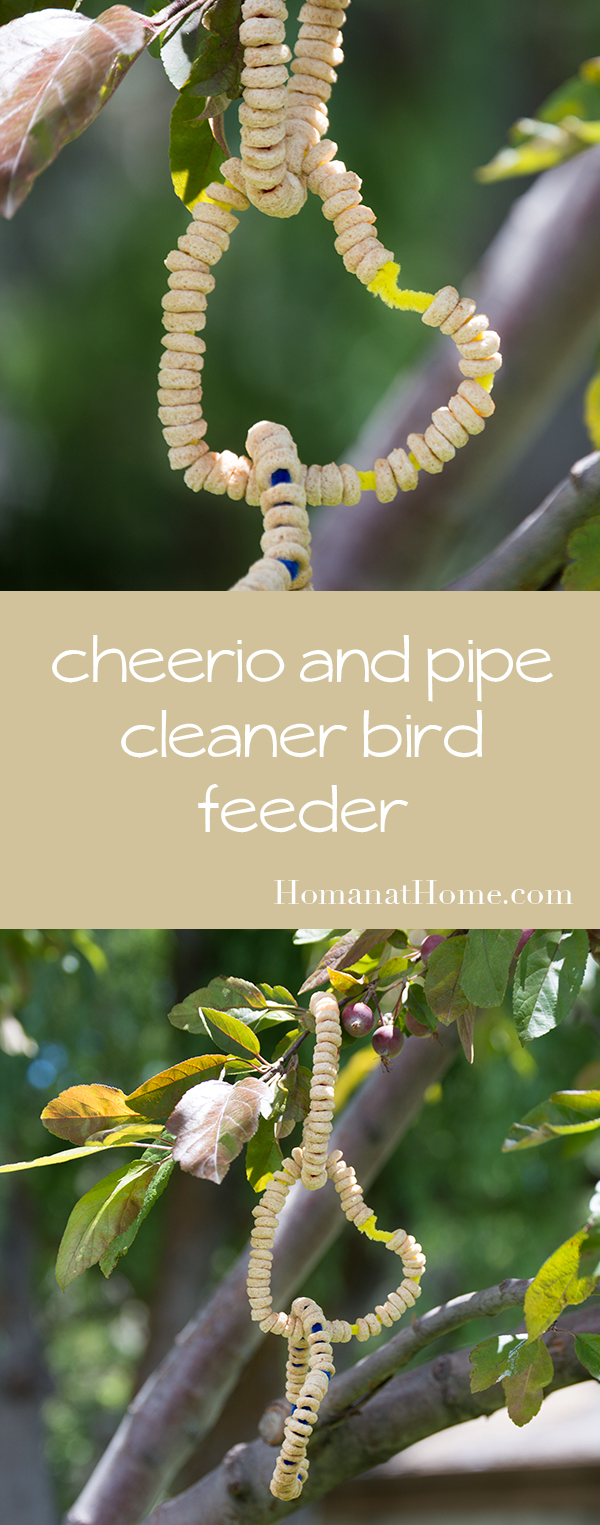 Cheerio and Pipe Cleaner Bird Feeder | Homan at Home