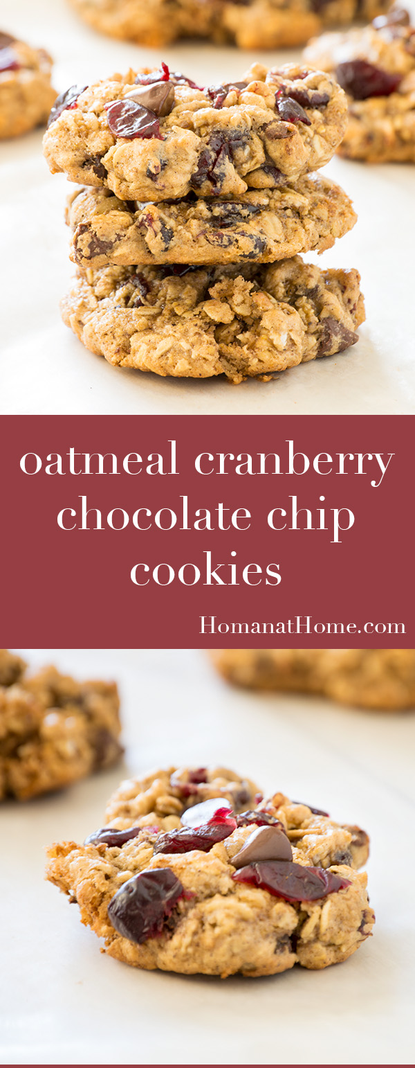 Oatmeal Cranberry Chocolate Chip Cookies | Homan at Home