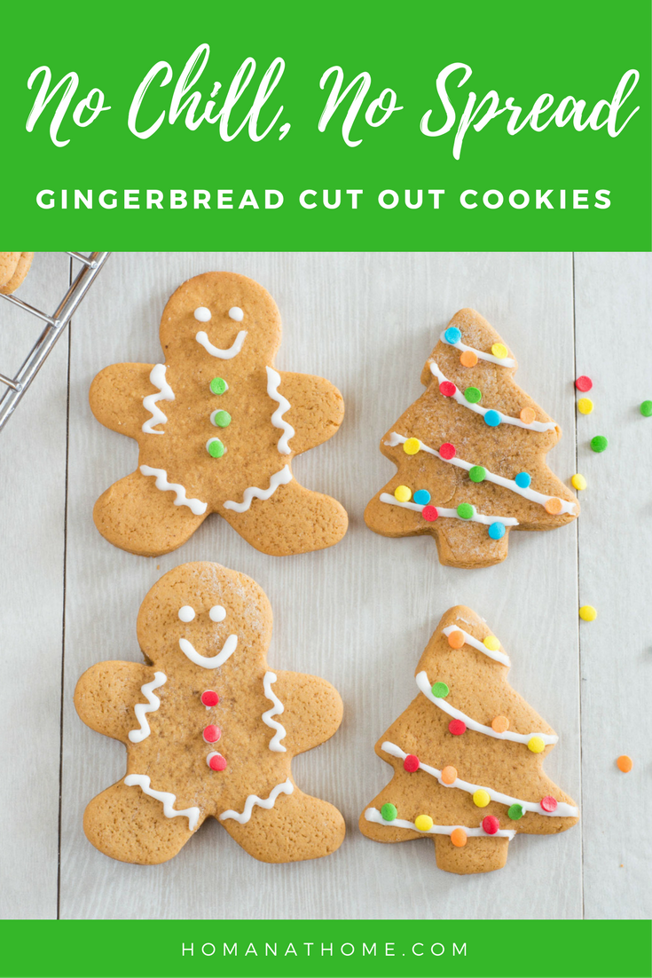 No Chill No Spread Gingerbread Cut Out Cookies | Homan at Home