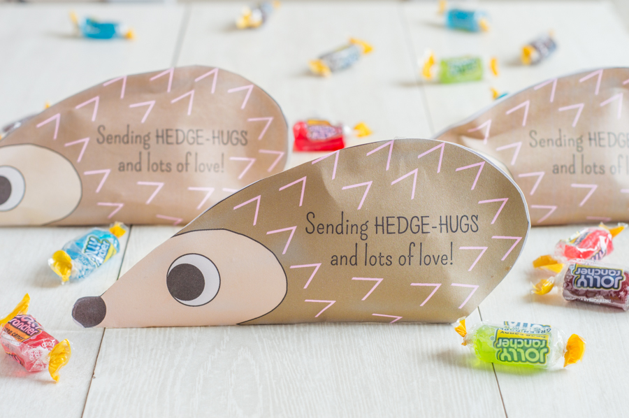 Hedgehog Candy Pouch