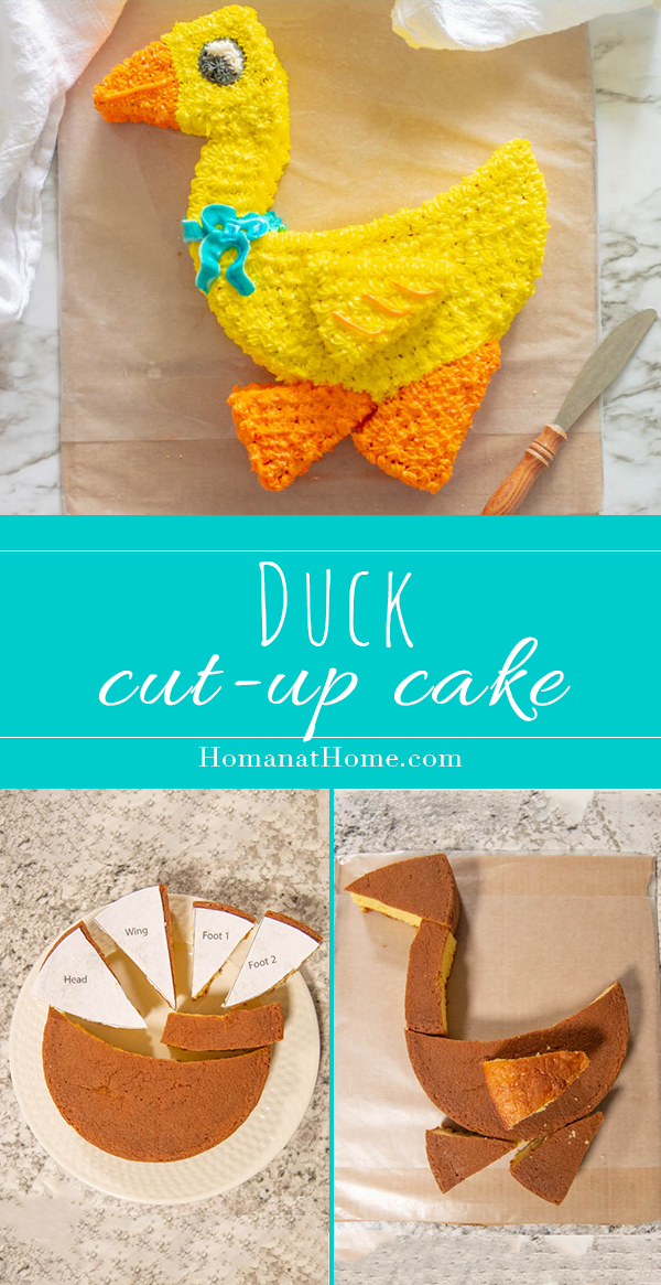 Duck Cut-Up Cake | Homan at Home