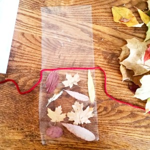 Suncatcher Leaves
