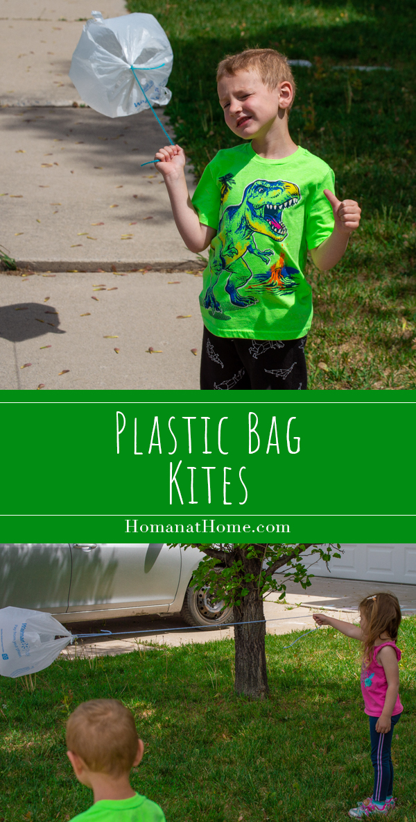 Plastic Bag Kites | Homan at Home